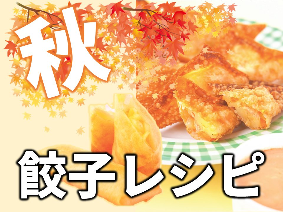 秋 餃子の皮レシピ
